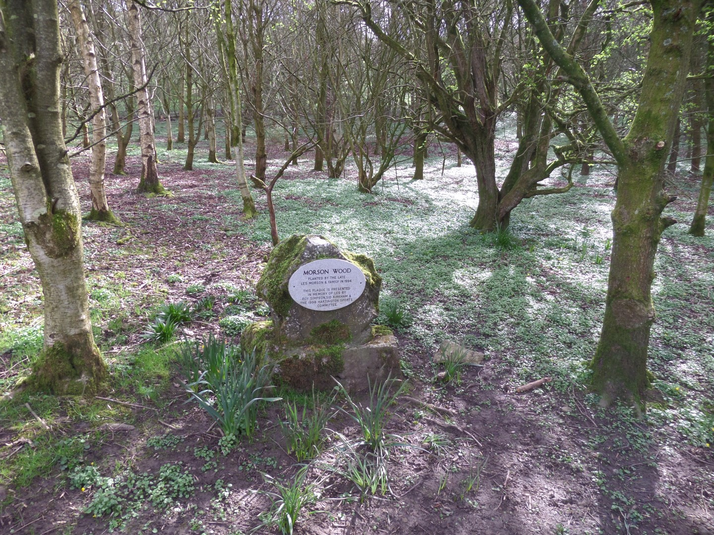 Morson Wood memorial marker